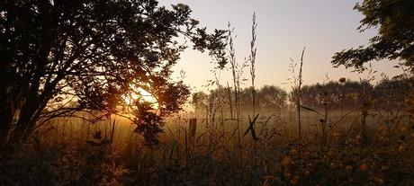 Sunrise in June.