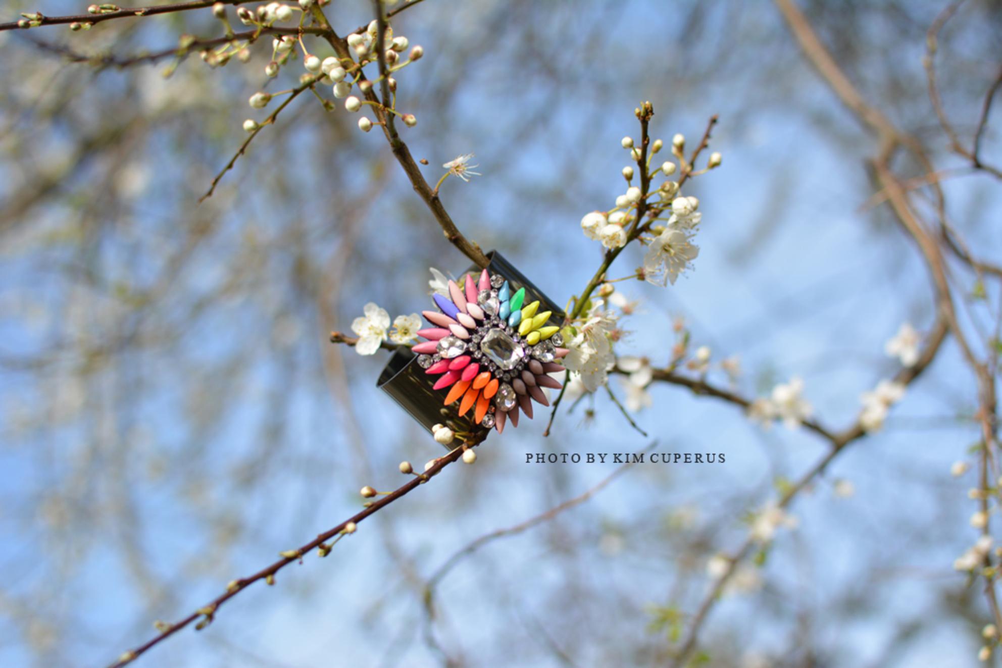 Regenboog - - - foto door Kimmiey op 08-07-2014 - deze foto bevat: boom, bloem, lente, licht, zomer, voorjaar, bloesem - Deze foto mag gebruikt worden in een Zoom.nl publicatie