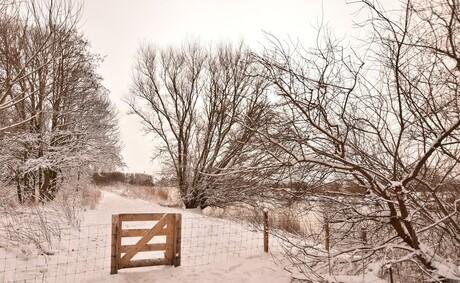 Sneeuwlandschap met hekje