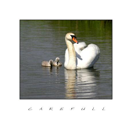 Carefull