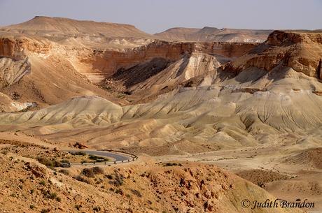 Mezoge Dragot Negev woestijn Israel