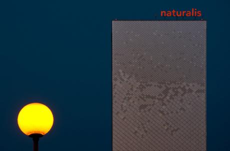 naturalis na zonsondergang