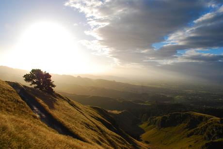 Temata Peak - Nieuw Zeeland 950