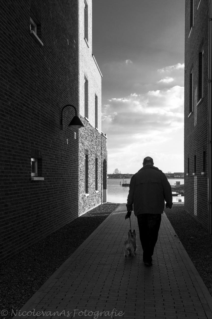 Backlight. - Voorjaar, lente licht. Eemhof marinahaven. Genieten. - foto door nicole-8 op 07-05-2014 - deze foto bevat: man, straat, licht, schaduw, tegenlicht, haven, zwartwit, huis, straatfotografie, puppy