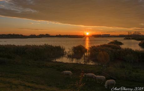 Crezee polder