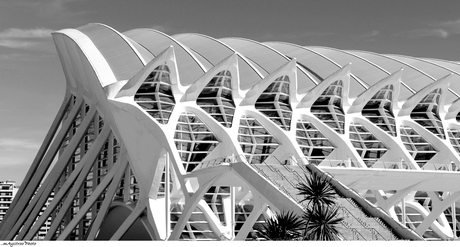 valencia architectuur