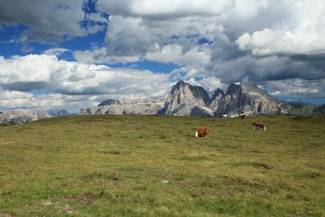 Seiseralm Zuid Tirol