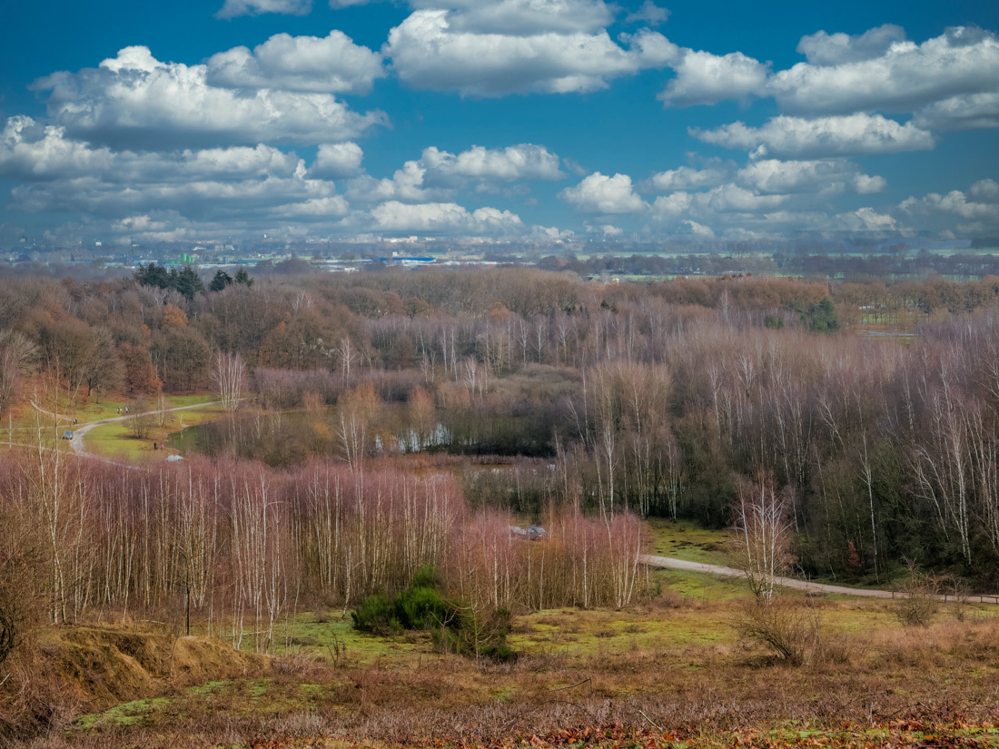 Kwintelooyen - Op de grens van de provincie Utrecht en Gelderland en helemaal aan de oostzijde van de Utrechtse heuvelrug ligt het schitterende natuurgebied Kwintel - foto door hvr2105 op 20-03-2021 - deze foto bevat: landschap, kwintelooyen, utrechte heuvelrug.