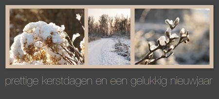 Fijne feestdagen voor iedereen! - Voor mij wordt 2012 geen actief zoom-jaar, maar ik blijf zo af en toe eens kijken. Fotografie staat gelukkig niet op een laag pitje, misschien wordt  - foto door profiel2 op 18-12-2011 - deze foto bevat: sneeuw, kerst, winter, kerstkaart, feestdagen, takjes