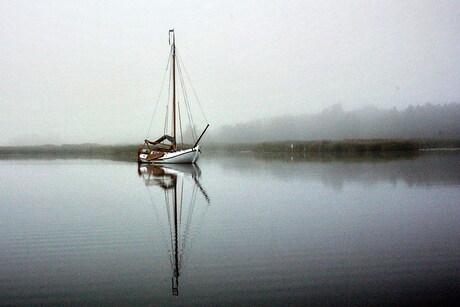 1731a boot in de ochtend mist 1.jpg