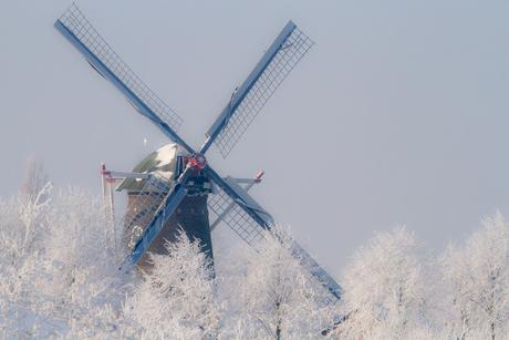 Winterlandschap_03