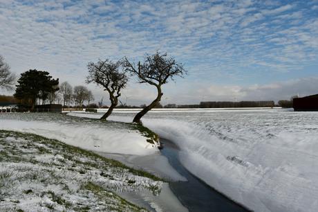 2021 winter_panorama