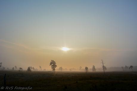 landschap tijdens mistige zonsopgang