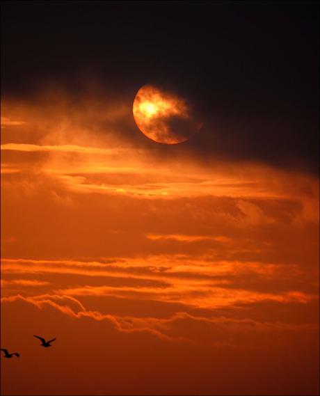 zonsopkomst..........................