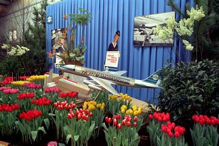Westfriese Flora KLM - Maart 1967 Westfriese Flora KLM. Dagelijks vliegt U met KLM over de hele wereld? Fotograaf; Harry Bedijs. Copyright; Stichting Foto Bedijs. - foto door Bedijs op 04-03-2021 - deze foto bevat: km, westfriese flora