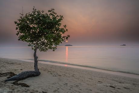 Reflection Beach