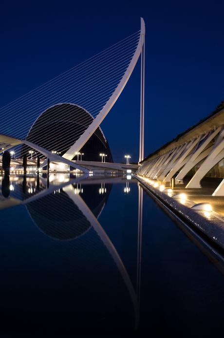 Stad van de kunst en de wetenschap by night