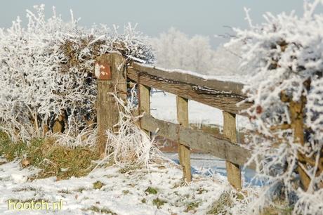 hek in sneeuw