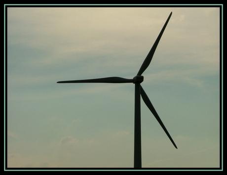 Windmolen in Waalwijk