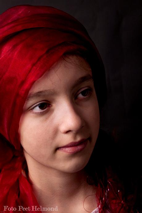 Vermeer meisje