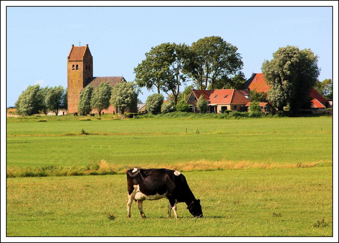 Friesland 2013 - Wat heeft ons land toch veel te bieden .. je kunt terug in de tijd .. als je je ogen maar de kost geeft .. - foto door jelle13 op 28-10-2013 - deze foto bevat: gras, water, wind, bomen, kerk, huizen, weiland, snelweg .