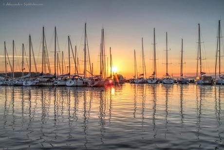 Harbor's Sunset