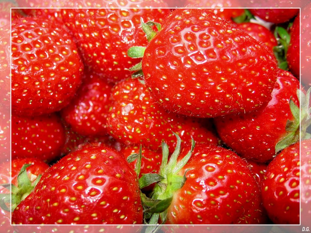 Tasty Red - Tis nog niet zover, maar je krijgt er toch spontaan trek in! Wit boterhammetje, beetje suiker en smullen maar! - foto door daniel44 op 24-03-2006 - deze foto bevat: rood, eten, red, natuur, lekker, voedsel, aardbei, close, trek, vrucht, veel, gezond, smakelijk, daniel44, pitjes, tasty, vitaminen