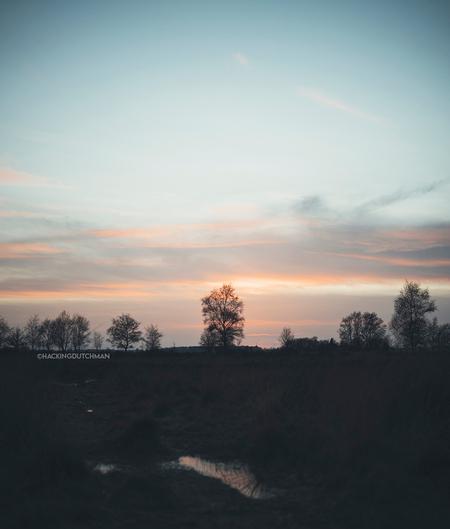 Pastelkleuren - Rustige pastelkleurige zonsondergang met wat bomen.     ©MotionMan 2021 - foto door motionman op 21-02-2021 - deze foto bevat: roze, lucht, kleuren, wolken, paars, blauw, zon, lente, natuur, oranje, winter, zonsondergang, landschap, silhouet, zons, simpel, kleurrijk, friesland, ondergang, zacht, pastel, elegant, zachte, mat, pastelkleuren, skar, scenisch, katliker