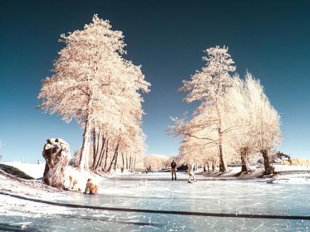 Winter sfeer - Heerlijk die koude maar helder edagen, en genoeg infrarood straling om in infrarood te kunnen fotograferen. Met een aangepaste camera en een 665nm fi - foto door meneerlex op 16-02-2021 - deze foto bevat: natuur, licht, structuur, bewerkt, fantasie, landschap, schilderij, vintage, bewerking, nostalgie, sfeer, contrast, creatief, textuur, sprookje, infrarood, manipulatie, lightroom, nik