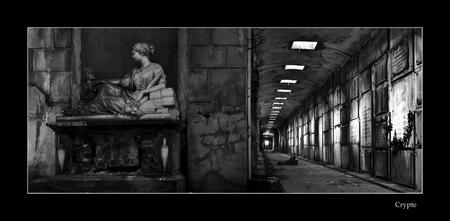 crypte - Na ons bezoekje aan Noisy ook nog even naar de crypte geweest. Ik was hier al eerder geweest, maar toen was het wat schemerig buiten door regen/onwee - foto door lidewijvandijk op 10-03-2010 - deze foto bevat: crypte