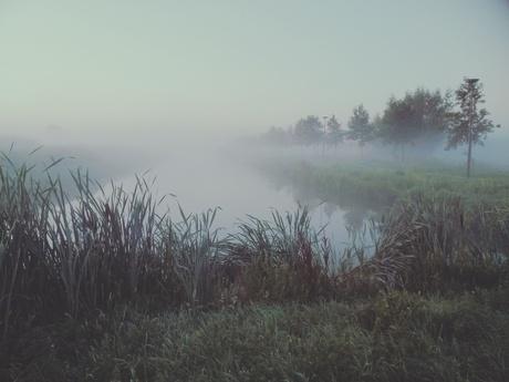 Mistige Nederlandse ochtend