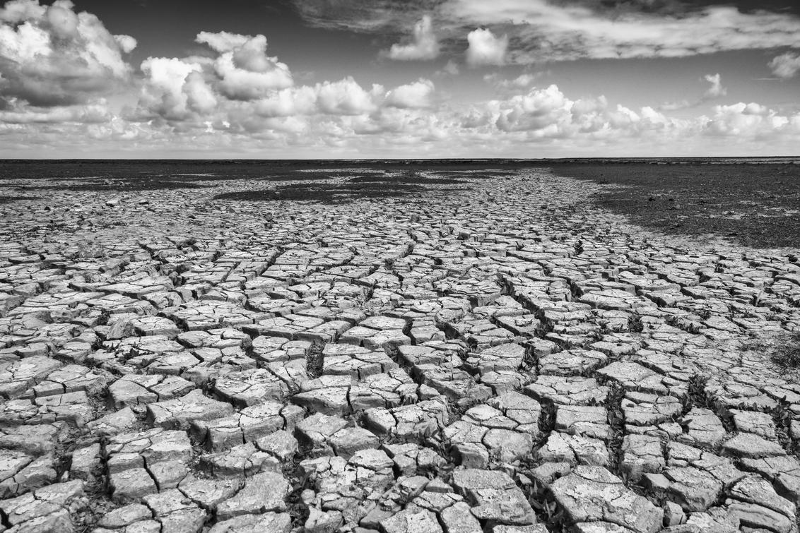 Moddergat - Moddergat aan de Waddenkust tijdens eb - foto door ervee_zoom op 28-10-2020 - deze foto bevat: natuur