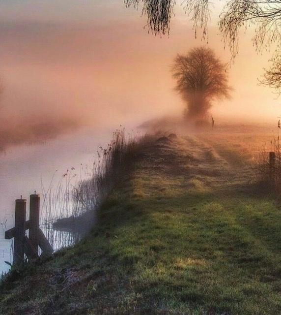 Nevelige zonsopkomst - - - foto door Potzerio op 04-03-2021 - deze foto bevat: lucht, wolken, water, lente, natuur, licht, spiegeling, landschap, mist, drenthe, zonsopkomst, bomen, meer, pier, rivier, polder, borger