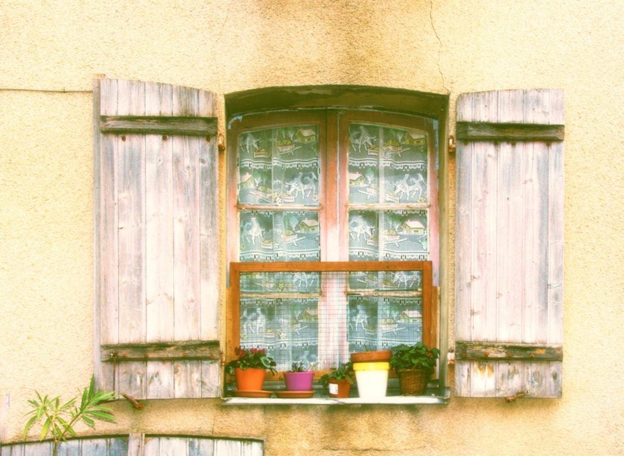 de bloemetjes buiten gezet - - - foto door onne1954 op 29-12-2015 - deze foto bevat: oud, lijnen, frankrijk, bloemen, planten, gebouw, stad, verlaten, luik, vervallen, luiken, urbex, blinden, hor, urban exploring