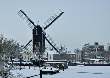 Winterdag in Leiden
