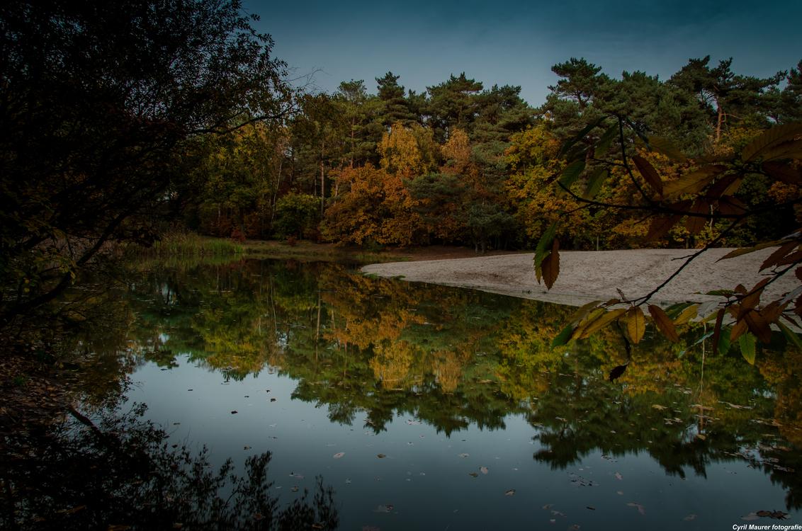 Experiment Herfst foto 1 - Experiment Deel 1 Groot kijken dan komt die beter tot ze recht ;)  Was vandaag na me werk even naar het bos gegaan om met de statief en me Lee Filt - foto door sipmaurer op 25-10-2015 - deze foto bevat: lucht, zon, water, herfst, spiegeling, landschap, bos, bomen, zand, ven, herfst klueren