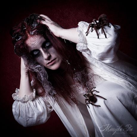 Itsy Bitsy Spider 2