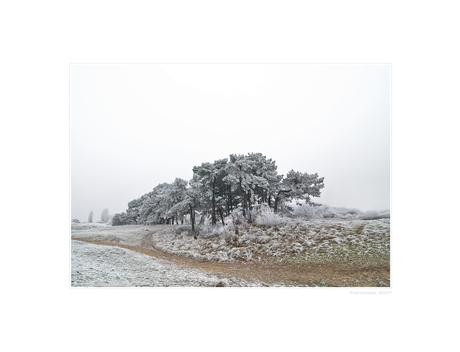 A Hazy Winter Wonderland - III