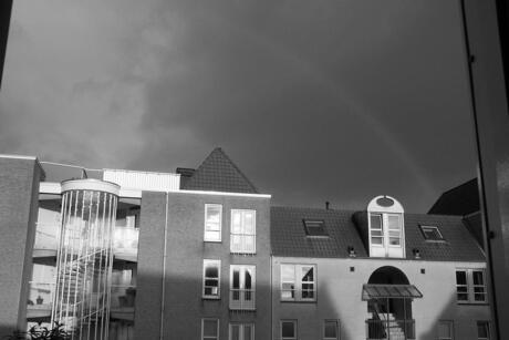 Zwart wit regenboog