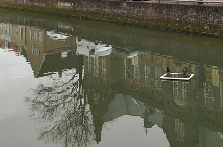 Elkaar Gevonden - Het is er weer tijd  voor - foto door pietsnoeier op 31-03-2021 - deze foto bevat: spiegeling, reflectie, watervogel, kampen, straatfotografie