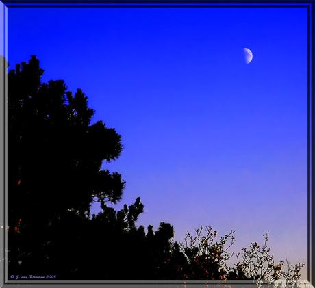 Zie de maan...