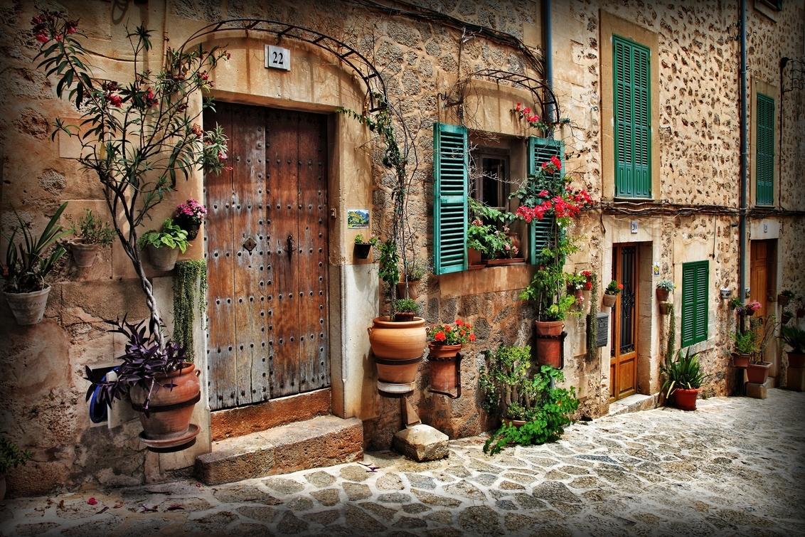 straatje in Frankrijk - vive la france - foto door Gooiseroos op 29-06-2017 - deze foto bevat: kleur, straat, vakantie, frankrijk, planten, deuren, straatbeeld, huis, plein, straatfotografie, luiken, centrum, straatje, keien, scheefte