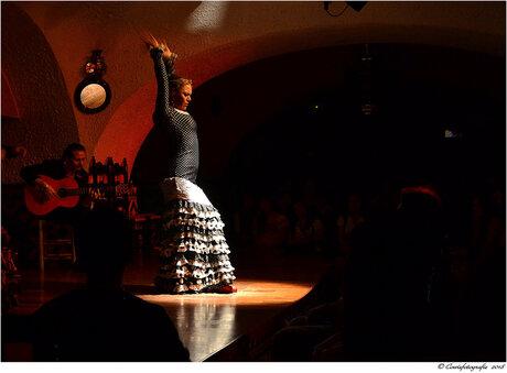Spaanse Danseres.