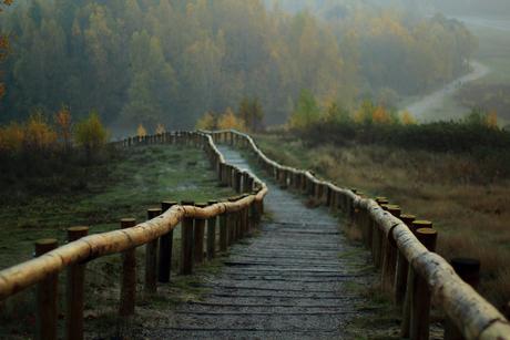 De weg