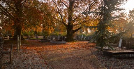 Herfst 1 (1 van 1)