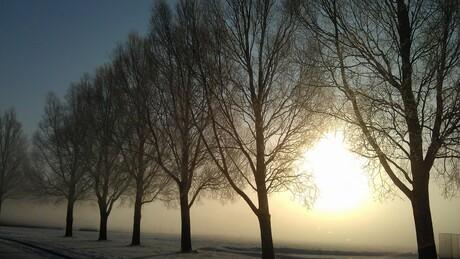 zon mist en sneeuw