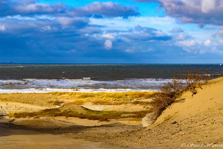 Onze kustlijn is zo mooi.