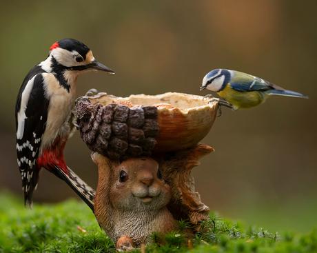 Samen lunchen