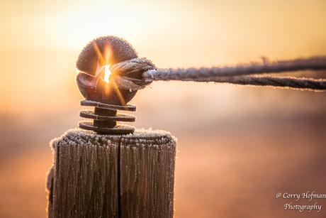 zonsopkomst op een koude dag