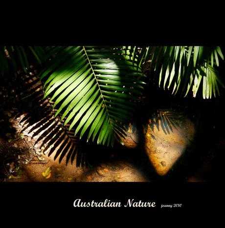 Australian Nature-1